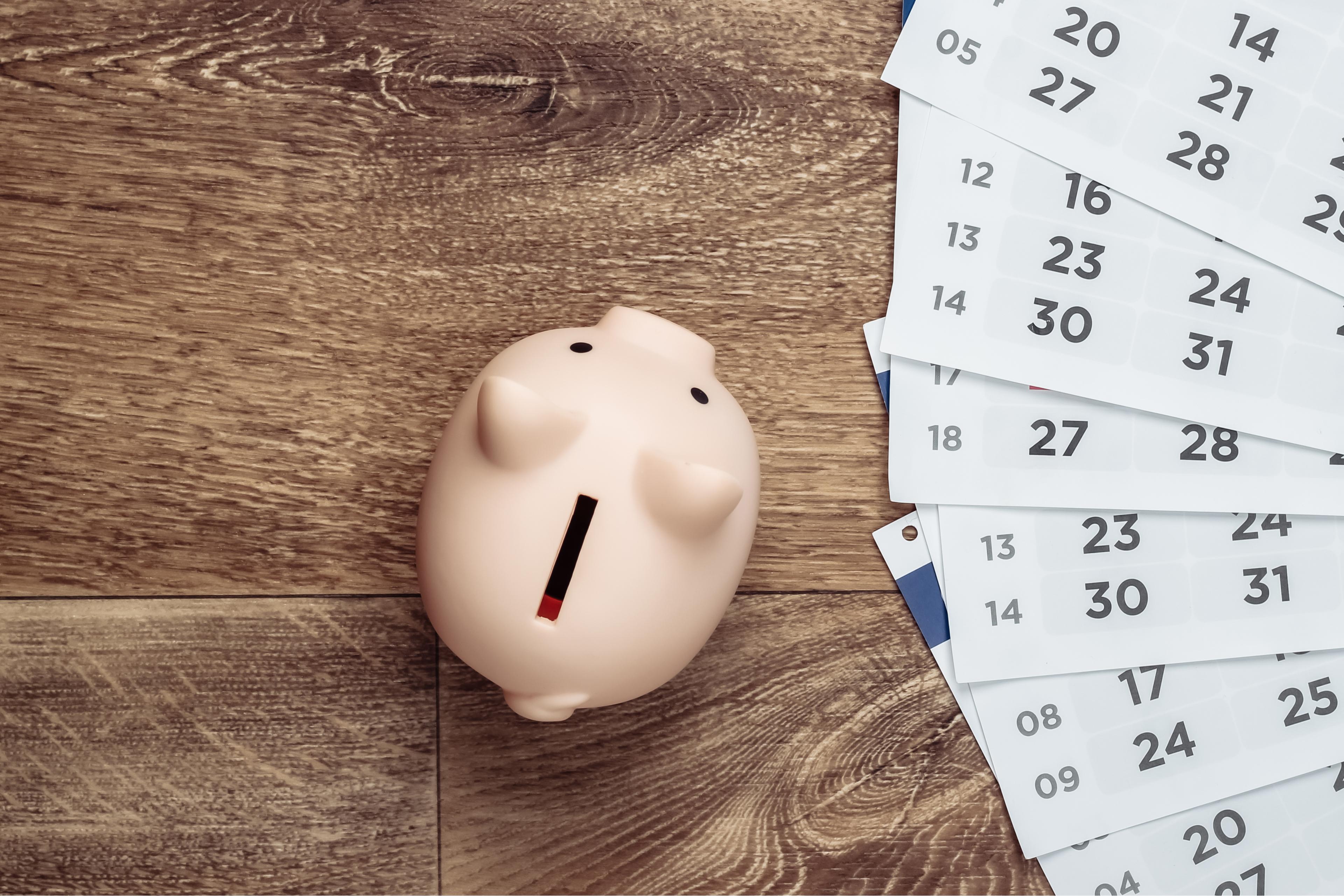 piggy banky savings