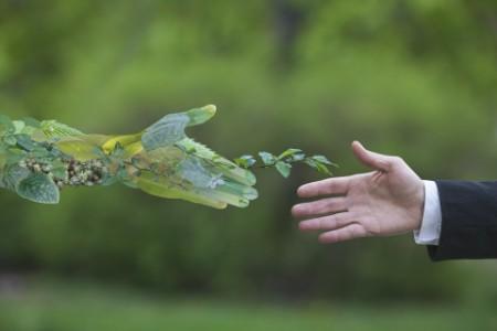 Webinář: Jak na udržitelné podnikání v Česku?