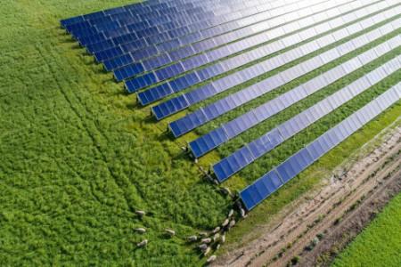 Grøn omstilling og økonomisk regulering