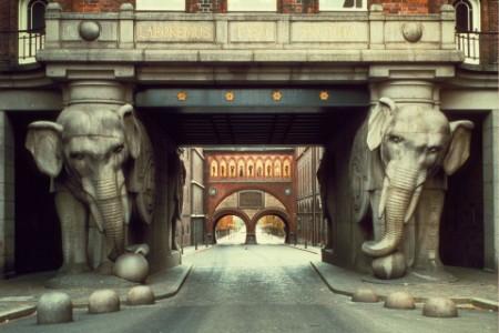 Foto af elefanterne Carlsberg