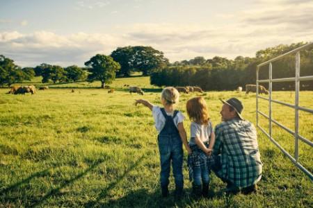 Mann mit Kindern auf der Kuhweide