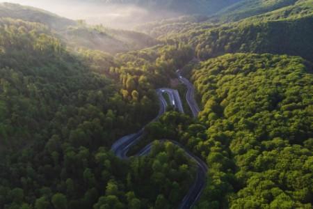 Serpentinenstraße im Wald aus der Vogelperspektive