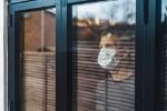 Coronavirus: Mann mit Maske in Quarantäne