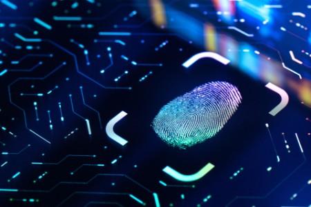 Digitaler Fingerabdruck