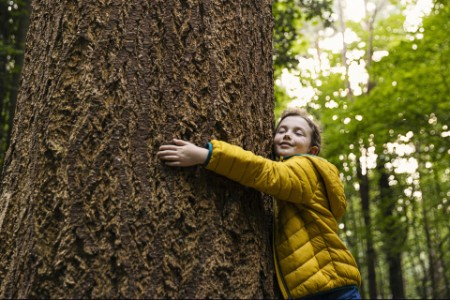 Junges Mädchen umarmt einen großen Baumstamm