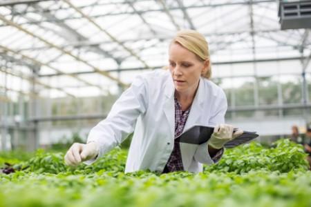 Wissenschaftlerin untersucht Pflanzen