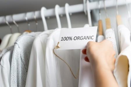 Bio-Kleid auf einem Kleiderbügel