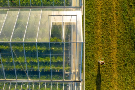 aerial view greenhouse roof person carrying vegetables