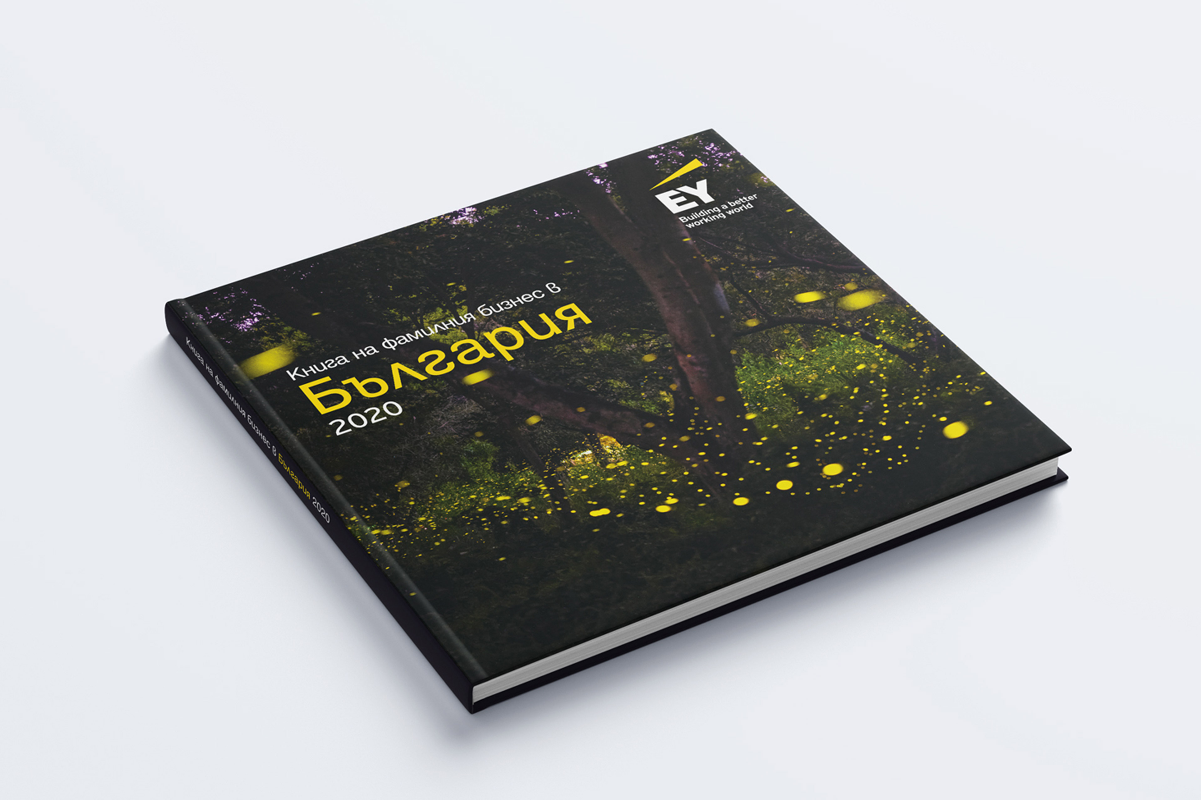 ey-bulgaria-has-published-the-second-family-business-book