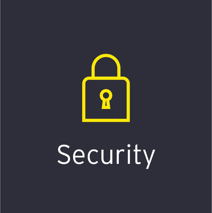 EY Infinity - Security Icon