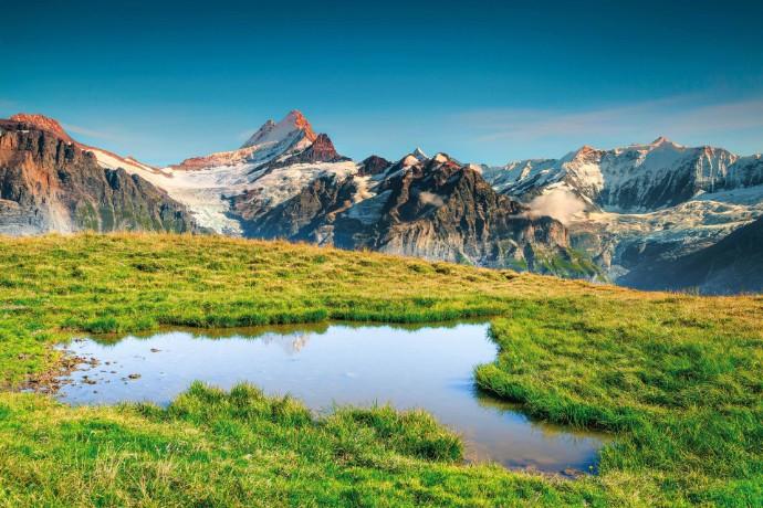 Swiss Biotech-Report: Agilität, Führung und Innovation - Report zeigt hervorragende Branchenleistung