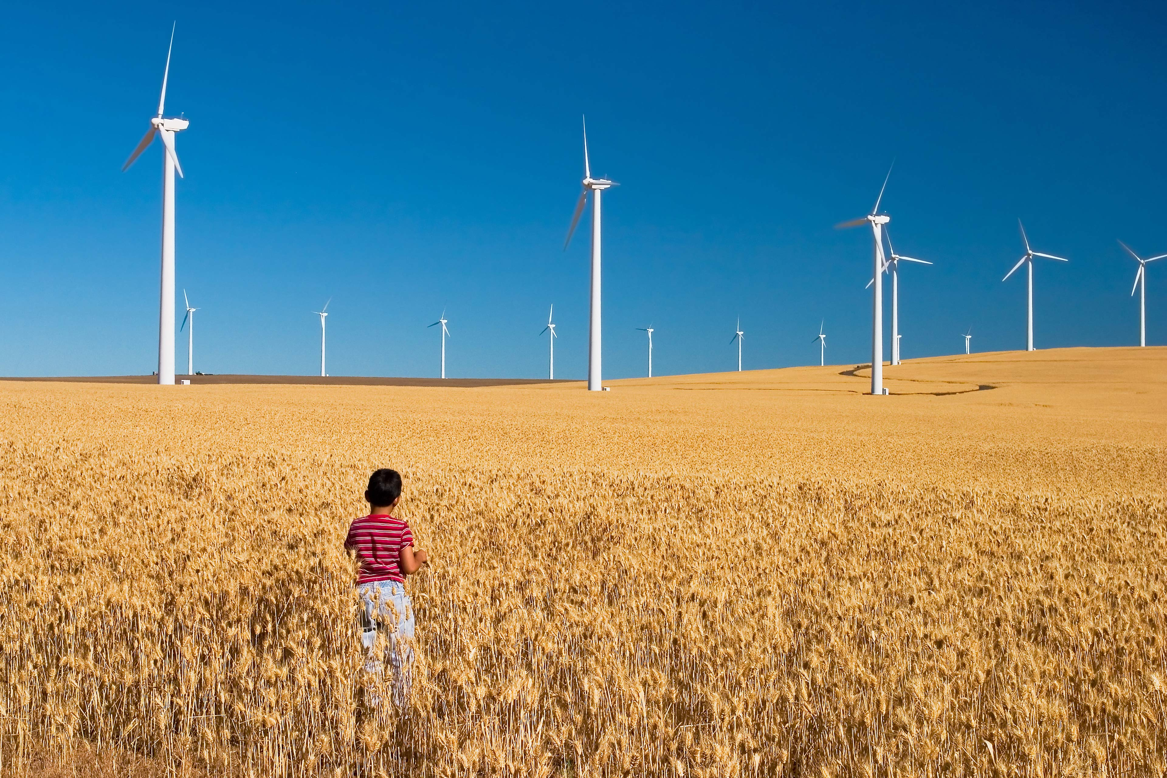 Child in a wind farm