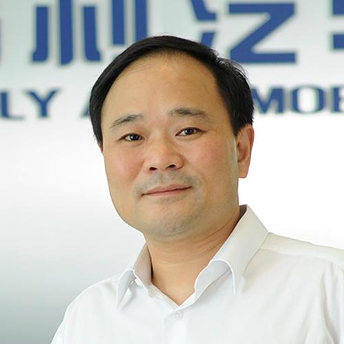 Li Shufu, Zhejiang Geely Automobile Holdings Ltd.