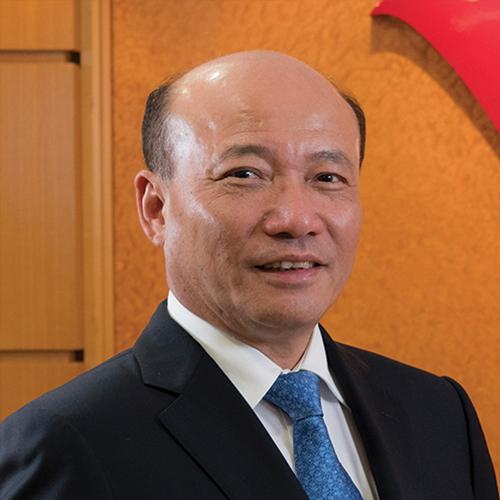 Wang Yanan, Tongda Group Holdings Limited