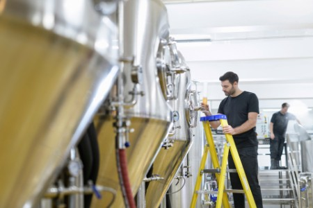 Brewer inspecting sample of beer from tank in small brewery