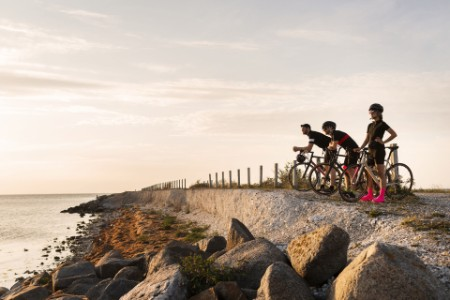 Three cyclists looking view coast