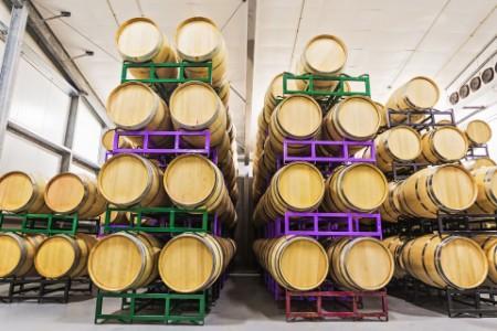 Wine barrels on racks cellar