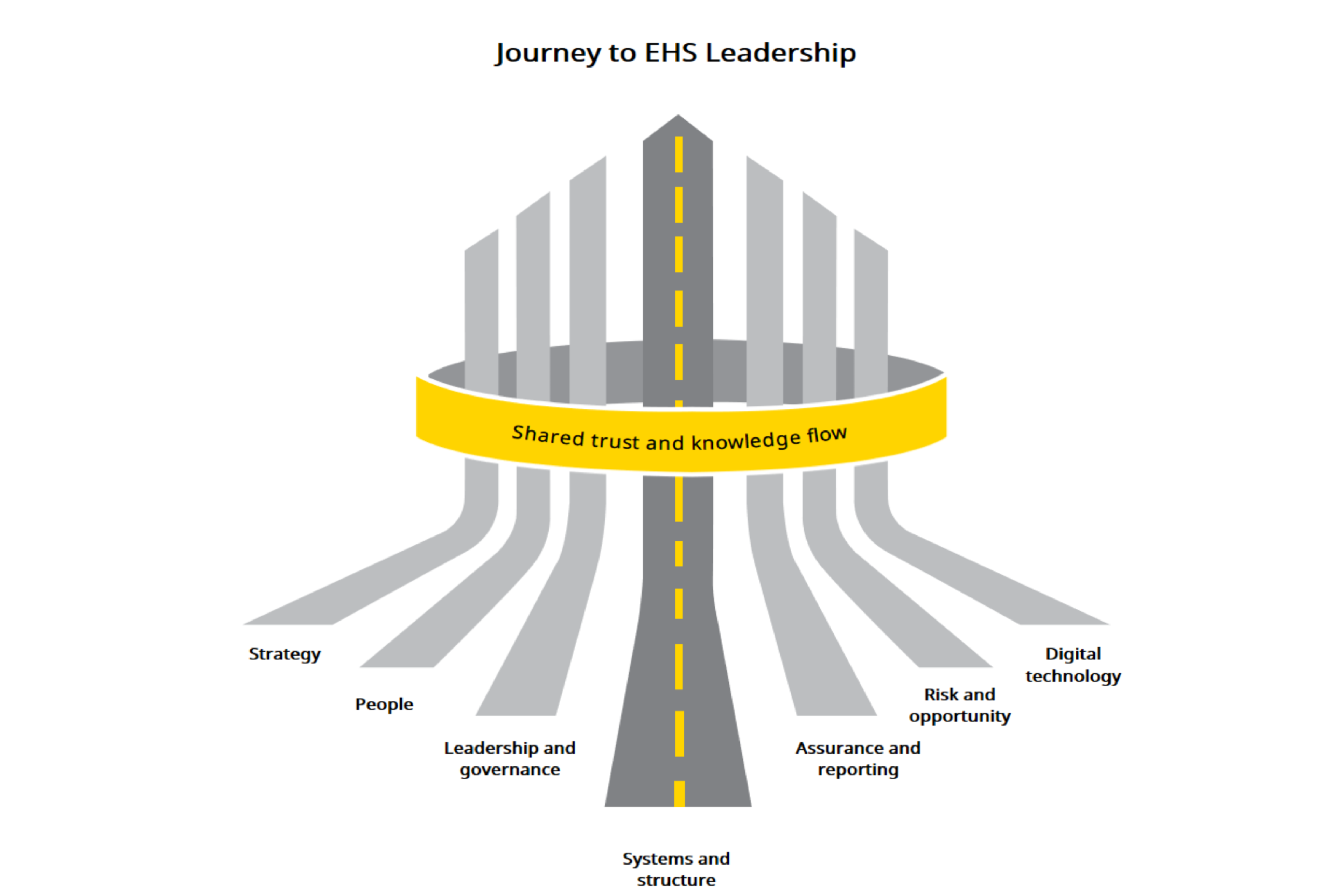 Journey to EHS leadership graphic