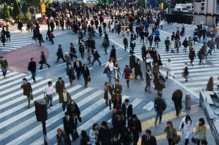 crowd pedestrian crossings japan