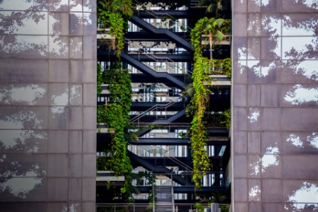 Building with levels and vegetation growing inside