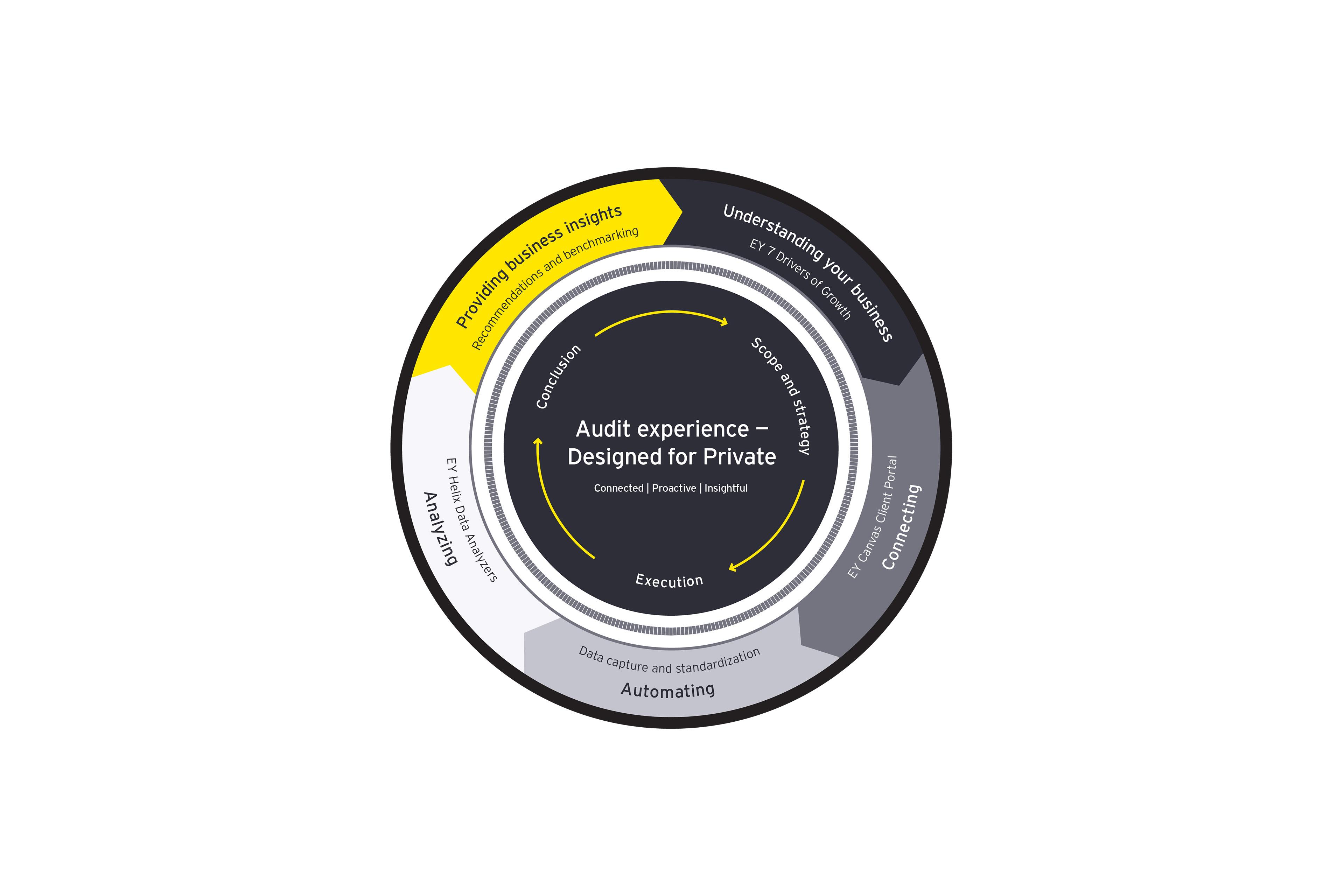 EY private client audit experience diagram