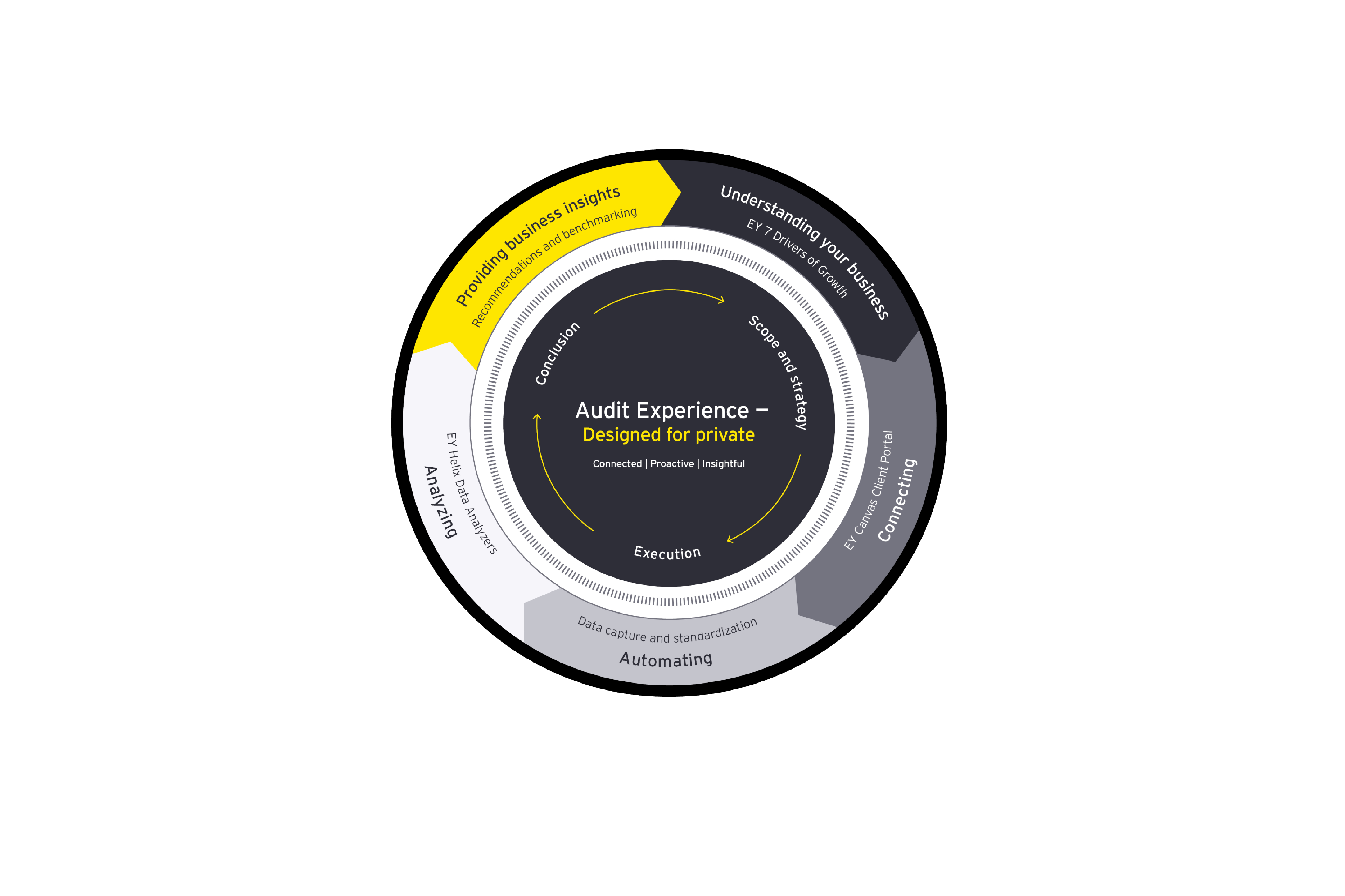 EY private client audit experience diagram