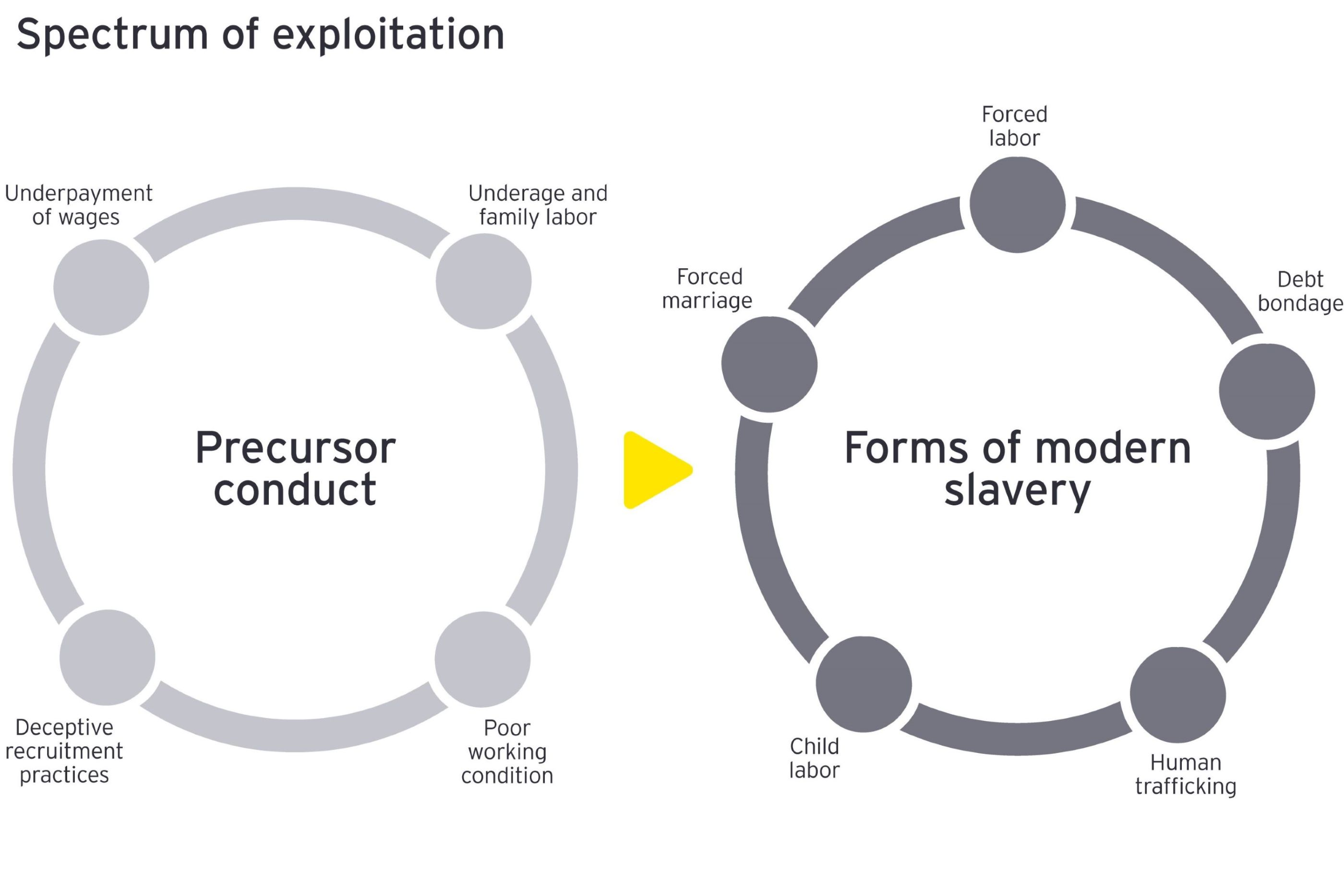 Graphic: Spectrum of exploitation