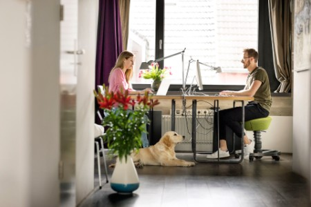 A man and woman with dog working at desk at home