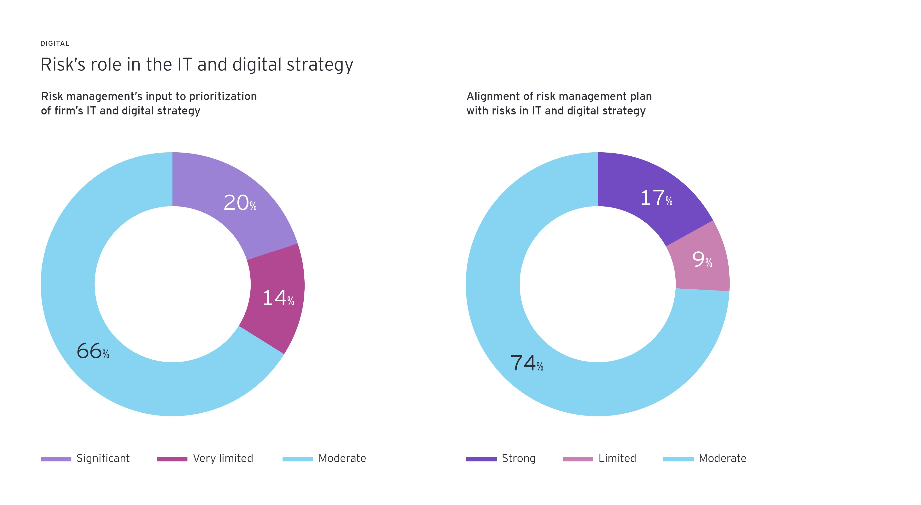 Risk's role in the IT and digital strategy