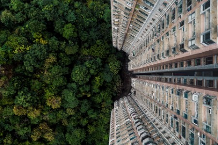 The contrast between nature and a building complex in Hong Kong