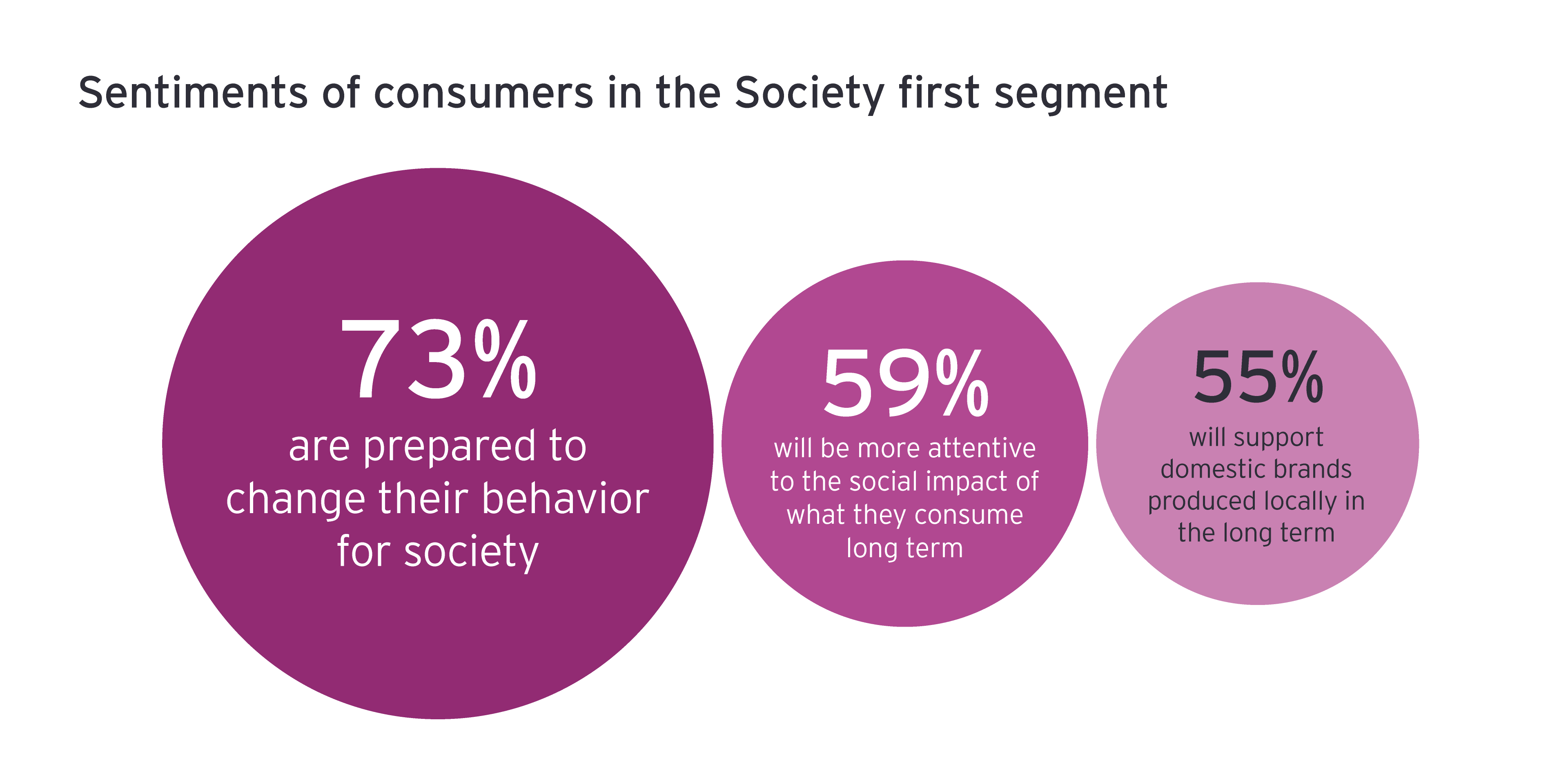 Sentiments of consumers in the Society first segment
