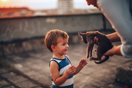 Boy meeting new pet
