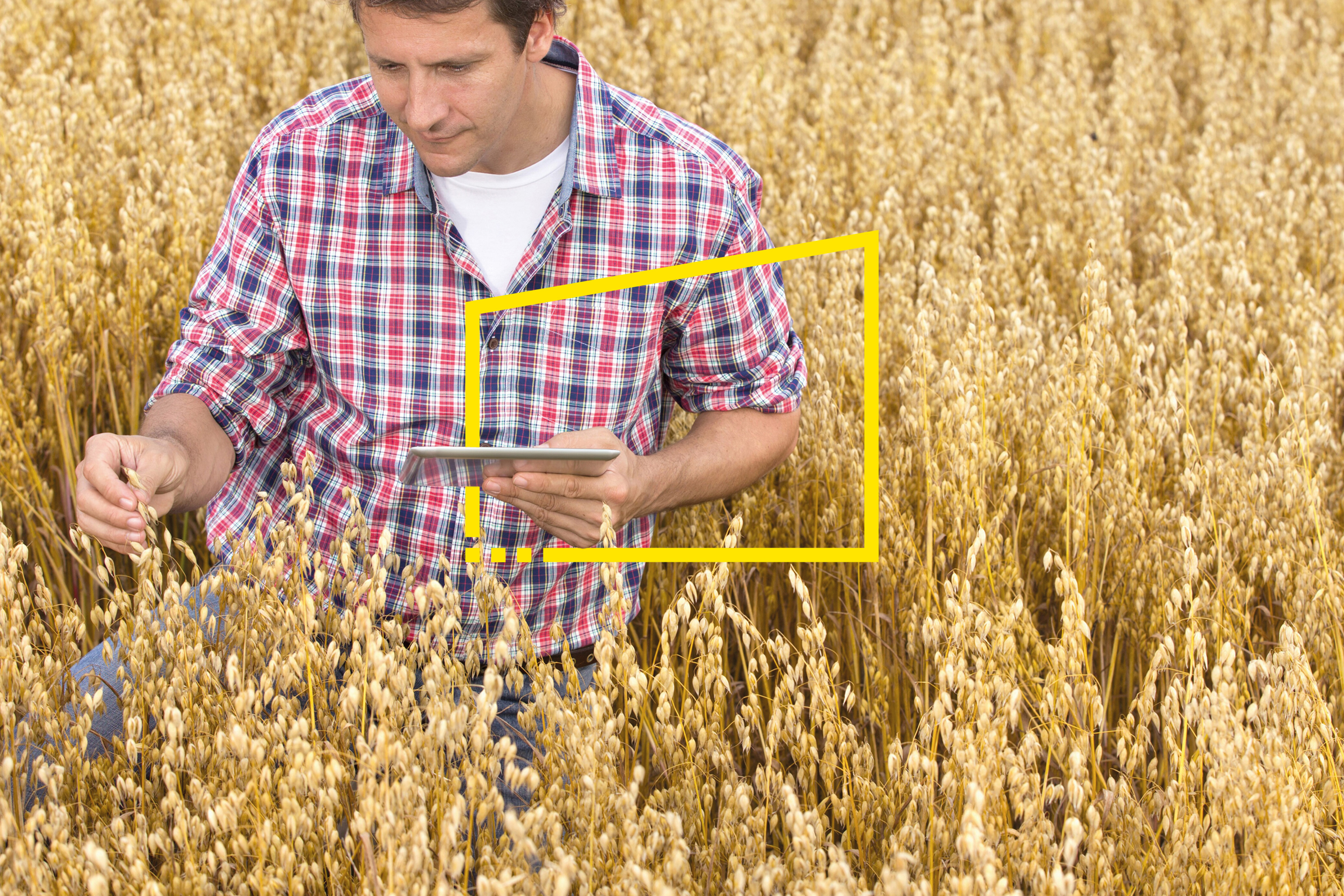 Digital agriculture: enough to feed a rapidly growing world?