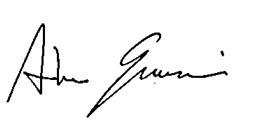 Andrea Guerzoni Signature