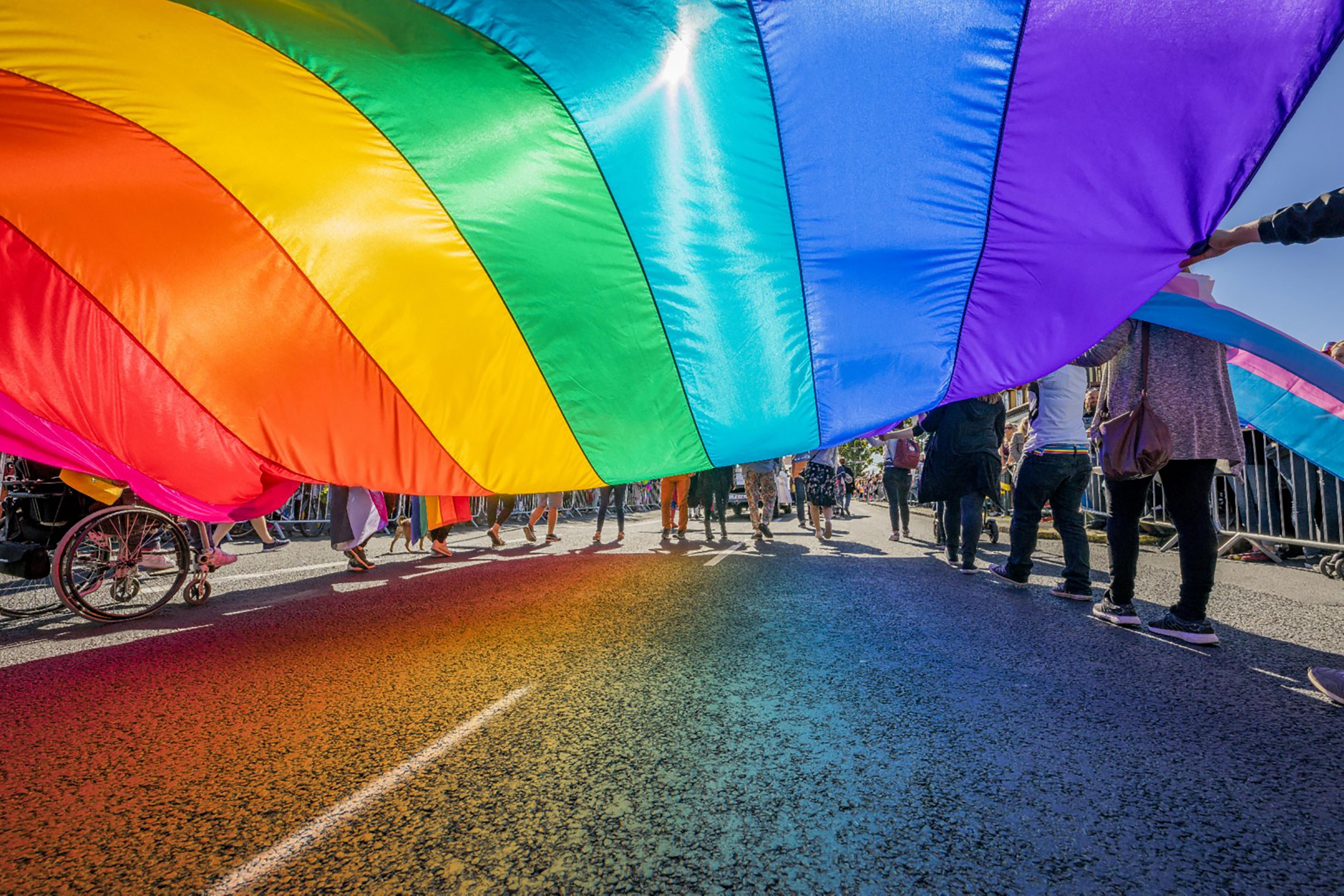 People celebrating Gay Pride in Reykjavik, Iceland