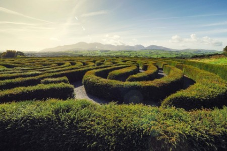 green maze with blue skies