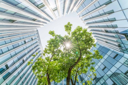 Modern ecological city