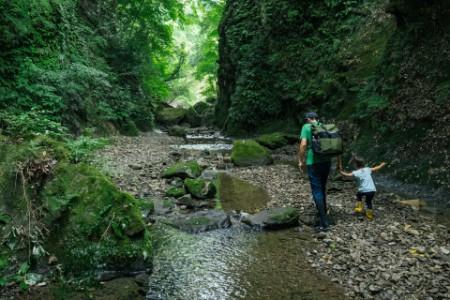 Apa és gyermeke túráznak egy erdei patak mentén