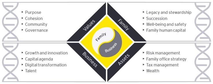 DNA Model for Family enterprise