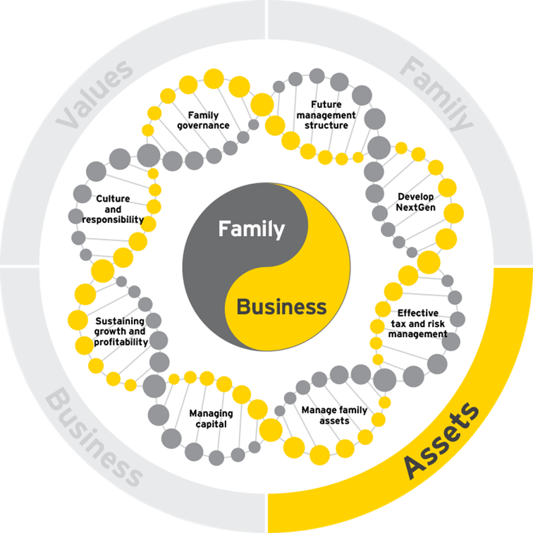 family business growth dna assets 04