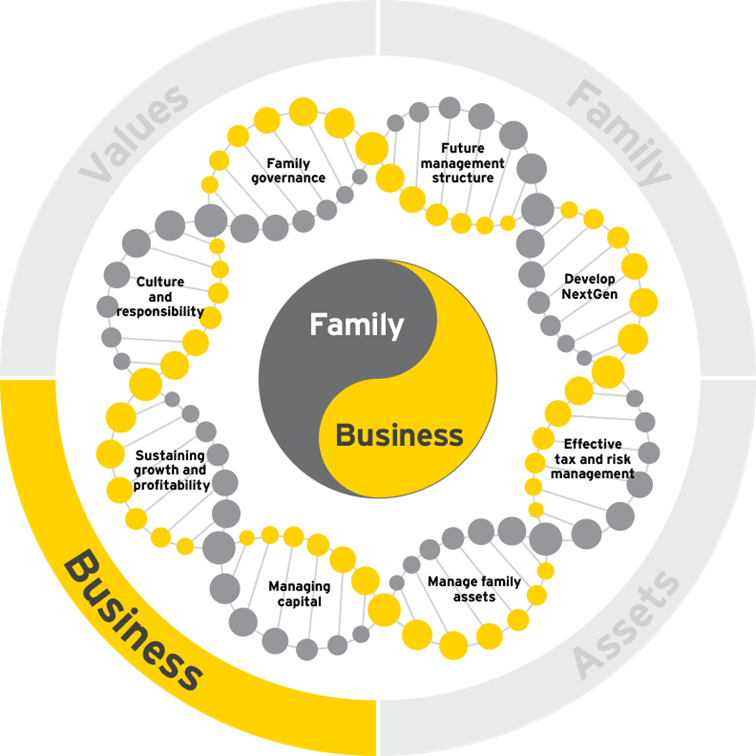 family business growth dna business 02