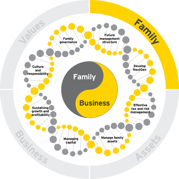 Family business DNA-familie