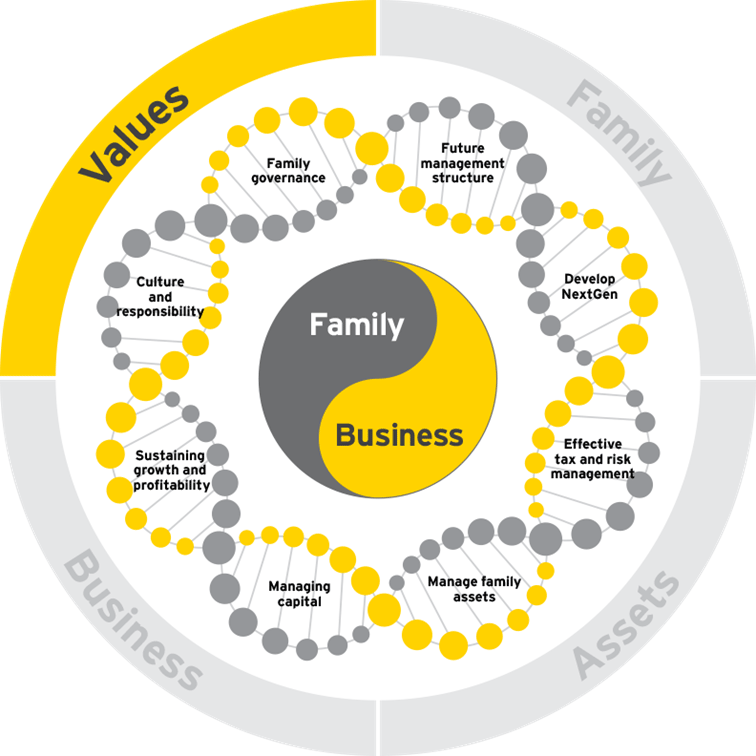 Family business DNA values