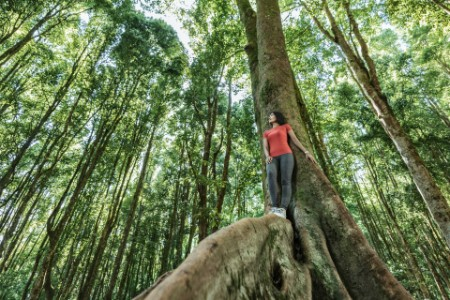 Asian woman standing in tropical rainforest