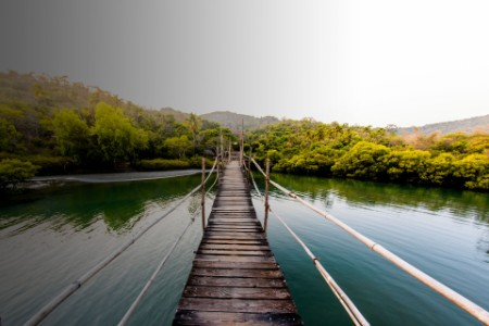 Walkway bridge made of wooden planks and leading to an island