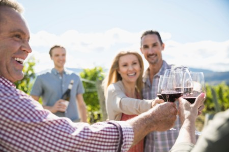 Couples toasting red wine glasses sunny vineyard