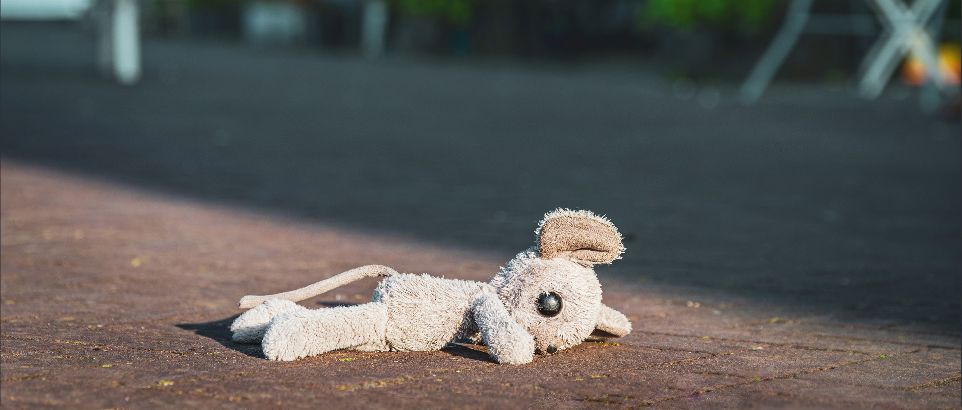 childs toy on the ground