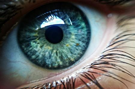 cropped human eye