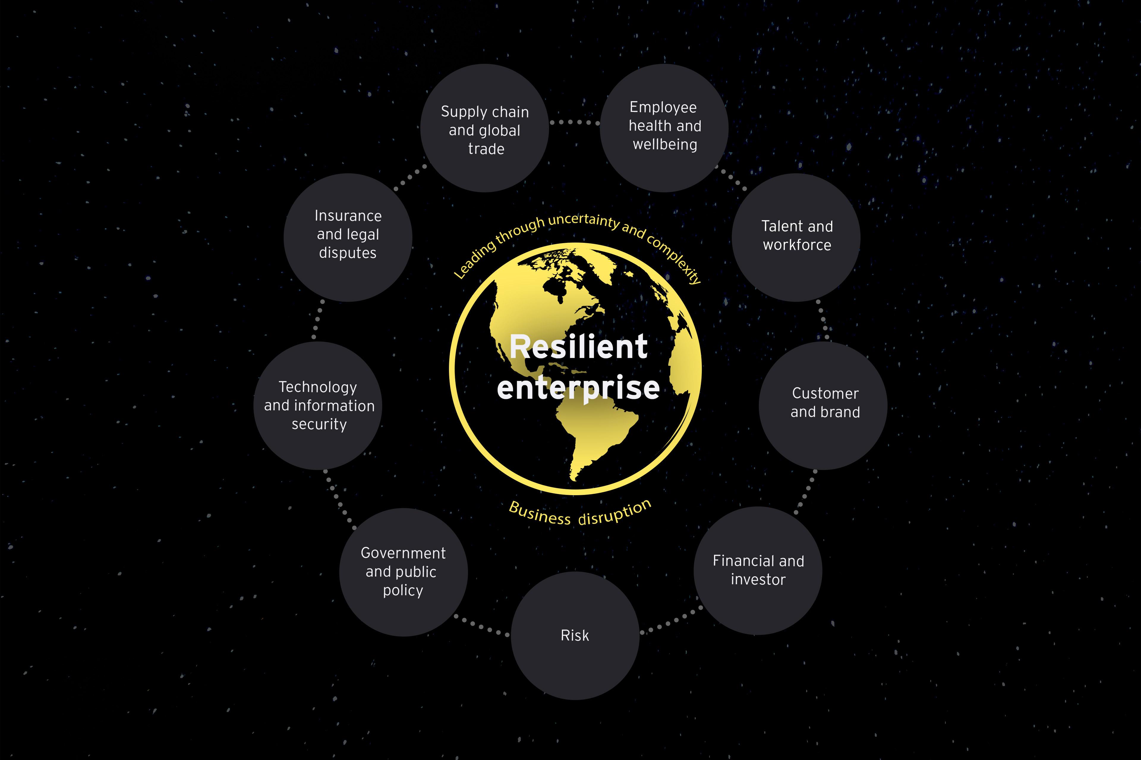 Übersichtsgrafik zum Resilience Enterprise Framework