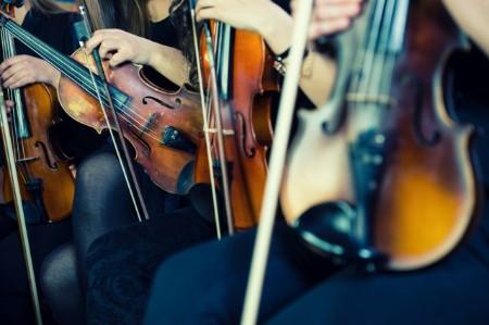 violinists preparing classical concert